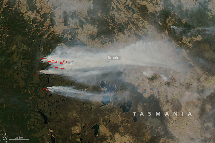 Image from the MODIS satellite sensor on 21st January 2016 with 'hot spots' delineated in red, indicating the location of several fires in the Mersey Valley region including at Lake Mackenzie (the northeastern-most hot spot). Source: NASA.